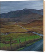 Road To Glenveagh Wood Print