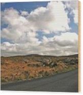 Road To Glenveagh National Park No 2 Wood Print