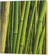 Road To Hana Bamboo Panorama - Maui Hawaii Wood Print