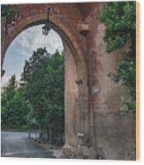 Road To Il Giardino Wood Print