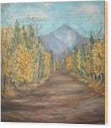 Road To Mountain Wood Print