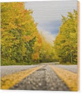 Road To Mt. Mitchell Wood Print