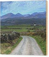 Road To Paradise Wood Print