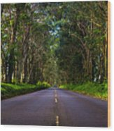 Road To Piopu Wood Print