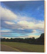 Road To River At Shiloh Wood Print