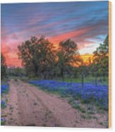 Road To Sunset Wood Print