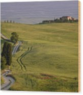 Road To Terrapille In Tuscany Wood Print