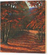 Road To The Clearing Wood Print