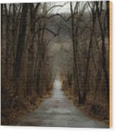 Road To Wildlife Wood Print