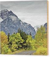 Road Too Autumn Wood Print