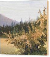 Roadside Apple Tree Wood Print