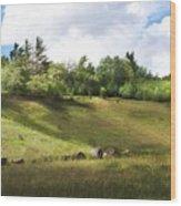 Roadside Hill Wood Print