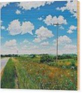 Roadside Prairie Wood Print