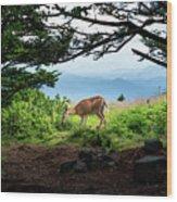 Roan Deer Wood Print