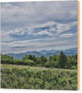 Roan Mountain 1 Wood Print