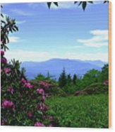 Roan Mountain Rhododendron Gardens Wood Print