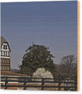 Roanoke Virginia Springtime Cityscape Wood Print
