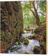 Roaring Spring Wood Print