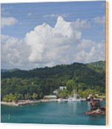 Roatan Shipwreck Wood Print