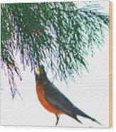 Robin 2 Wood Print