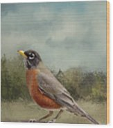 Robin Abstract Background Wood Print