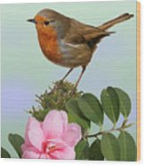 Robin And Camellia Flower Wood Print