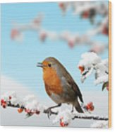 Robin And Cotoneaster With Snow Wood Print