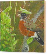 Robin In The Serviceberry Bush Wood Print