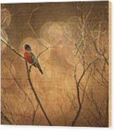 Robin Wood Print by Lois Bryan