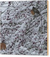 Robins In The Snow Wood Print