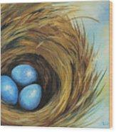 Robin's Three Eggs II Wood Print
