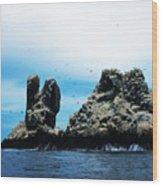 Roca Partida Wood Print