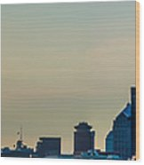 Rochester Ny Panorama At Dusk Wood Print