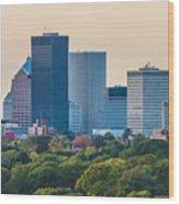 Rochester Ny Skyline At Dusk Wood Print