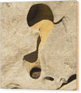Rock And Sand Wood Print