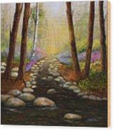 Rock Bottom Creek Wood Print