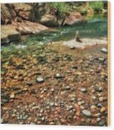 Rock Cairn At Buddha Beach - Sedona Wood Print