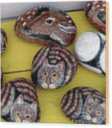 Rock Cats And Fawns Wood Print