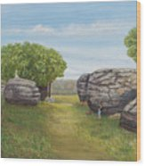 Rock City, Kanss Wood Print