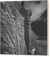 Rock Climber Monochrome Landscape  Wood Print