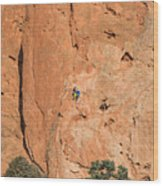 Rock Climbers  Wood Print