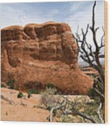 Rock Fin -- Arches National Park Wood Print