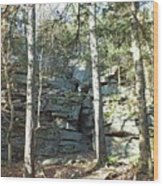 Rock Formation 3 - Ricketts Glen Wood Print