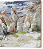Rock Formation Bettys Bay Wood Print by Jan Hattingh