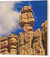 Rock Formations, Bryce National Park Wood Print
