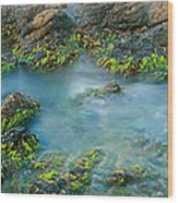 Rock Formations In The Sea, Bird Rock Wood Print
