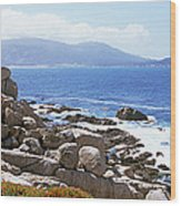 Rock Formations On The Coast, 17-mile Wood Print