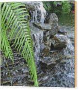 Rock Fountain II Wood Print