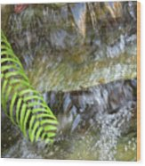 Rock Fountain Wood Print