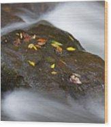 Rock In Water Wood Print